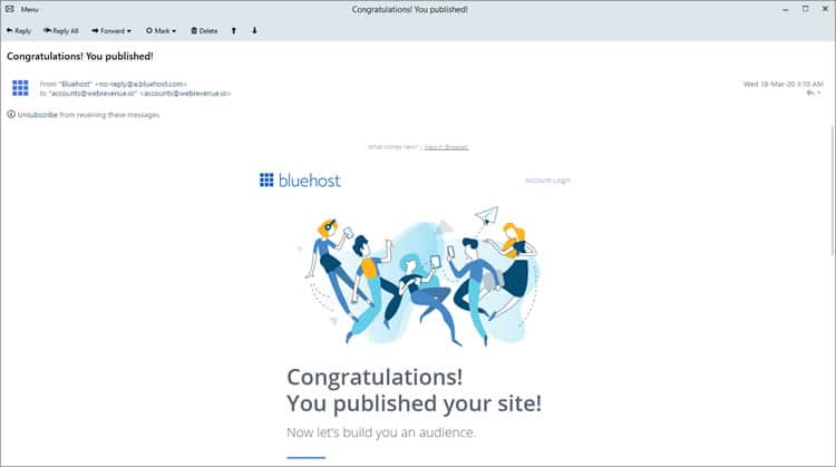 bluehost-email